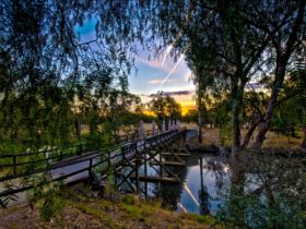 Sunday Creek Bridge, Pfeiffer Wines