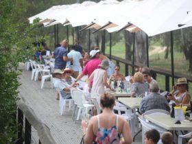 Pfeiffer Wines Bridge Bar