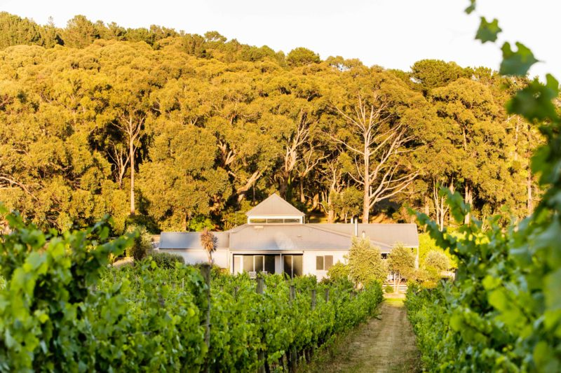 Polperro villas are located just metres from the vineyard