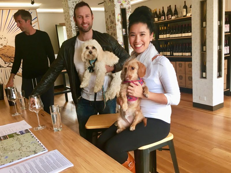 Pooches and Pinot Tasting in Healesville