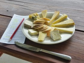cheese tasting, cheese, cheese and wine, dairy, sheep milk cheese, local produce, tasting notes