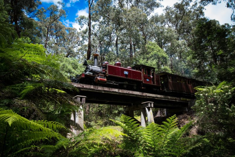 Puffing Billy over the Trestle Bridge
