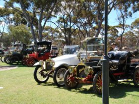 Veteran cars on display