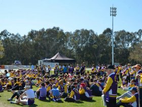 Relay for Life Wangaratta, 2015