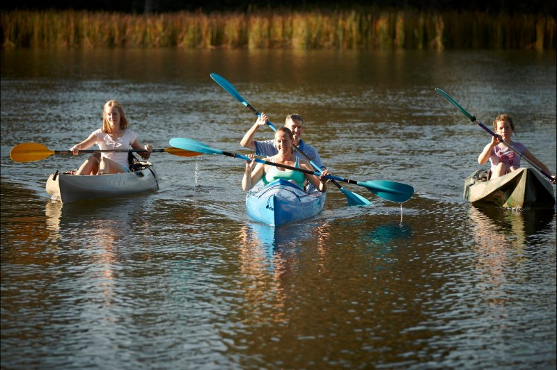Paddle the Ovens River