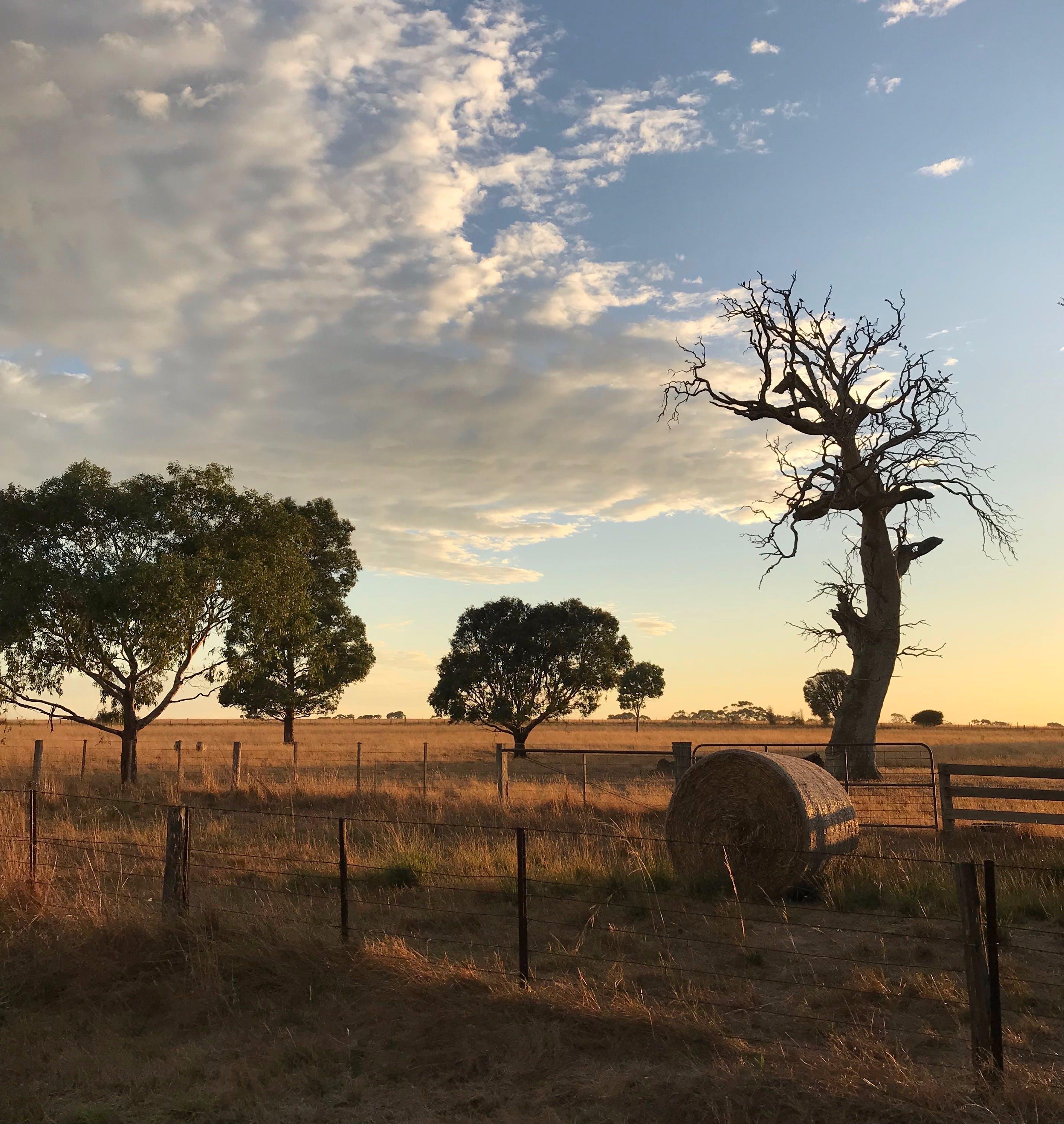 Rocklea Farm sunset