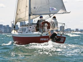 Sailing boat on port phillip