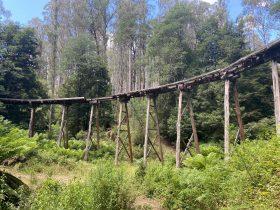 Lubra Creek Trestle Bridge