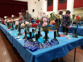 Rutherglen and District Garden show single rose exhibition
