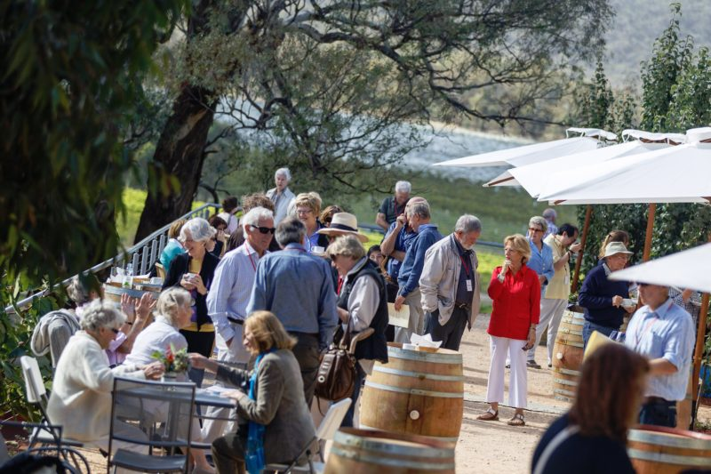 Sights and sounds of the Sanguine Estate Music Festival
