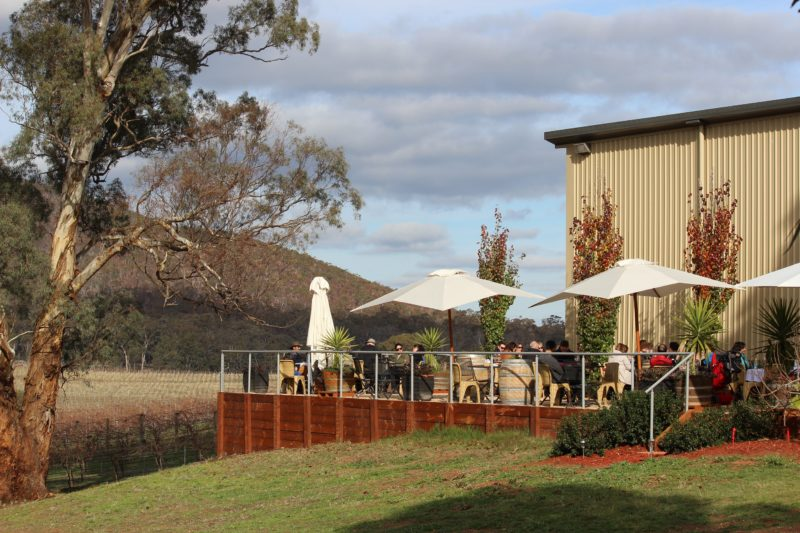 Winter sunshine at the winery