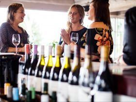 Ladies on a wine tour doing a tasting at our Scotchmans Hill Cellar Door