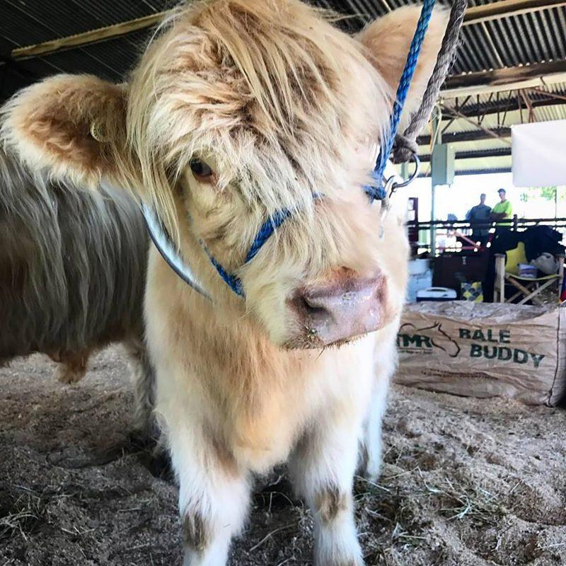 Seymour Alternative Farming Expo