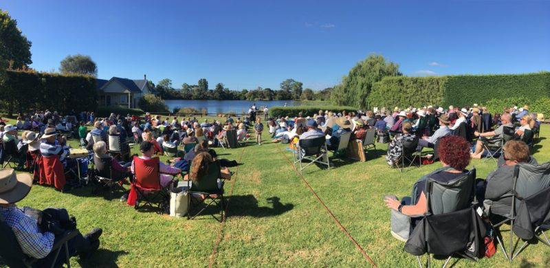 Shakespeare in the Vines at Crittenden Estate