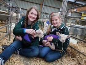 Sheepvention Rural Expo