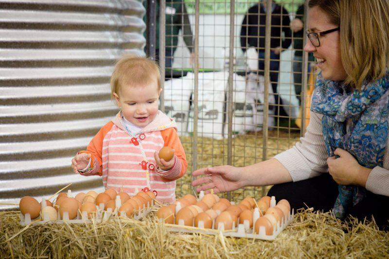 Sheepvention Rural Expov