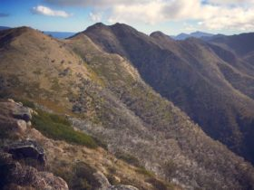 The Crosscut Saw - a picturesque, undulating ridgeline from Mt Howitt to Mt Speculation