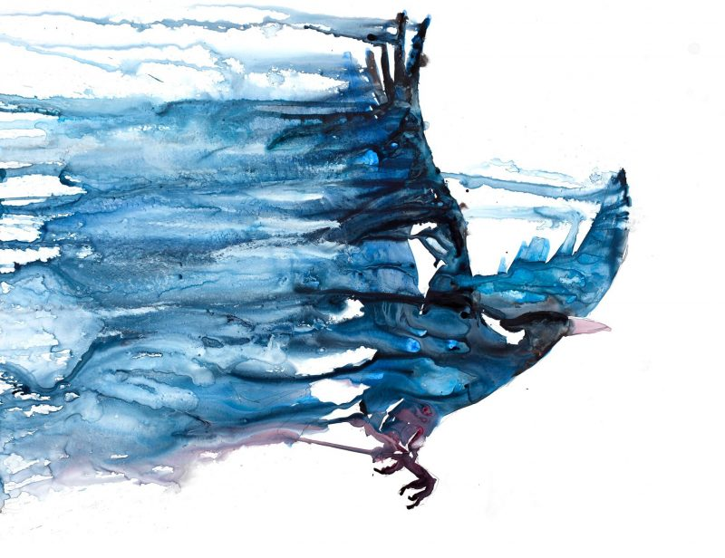 Watercolour painting of a swooping magpie
