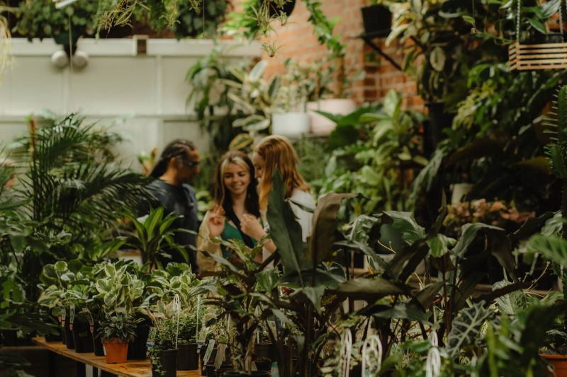 botanicah plants and events prahran