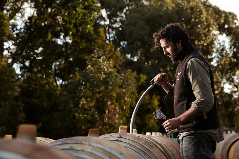 Stonier Wines