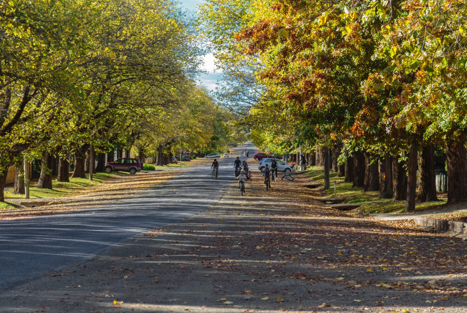 Storyteller Tours - Autumn in Beechworth