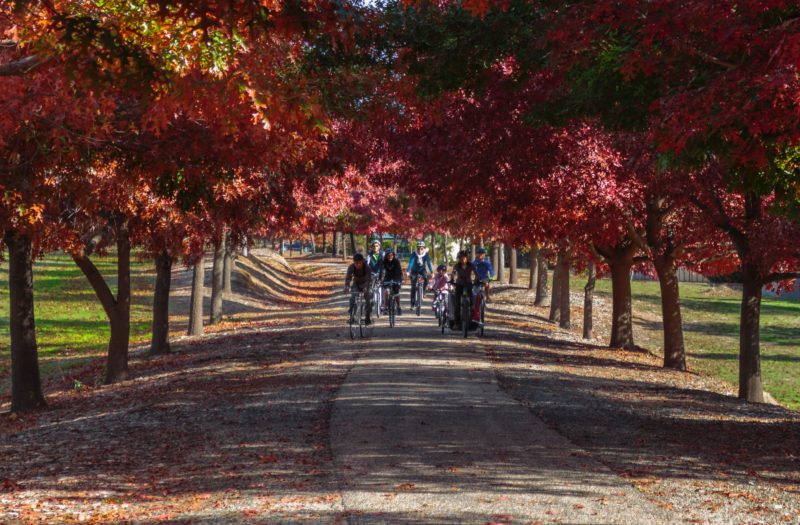 Storyteller Tours - Autumn colours