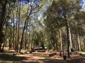 Stringybark Historical Reserve