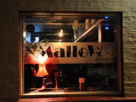 Welcome to The Mallow