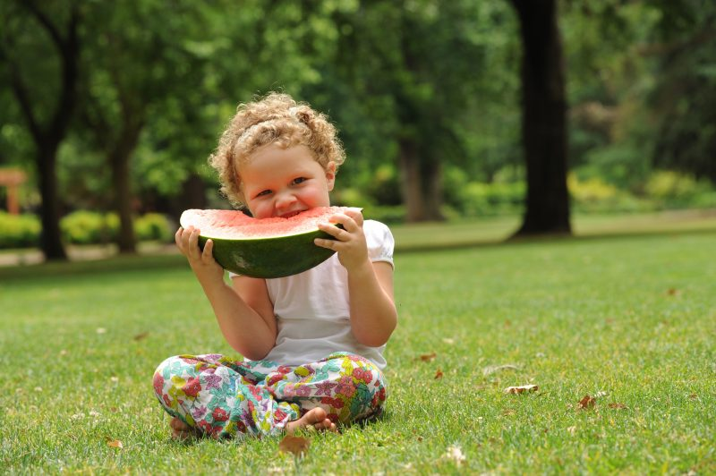 Summer in the Parks in Bendigo