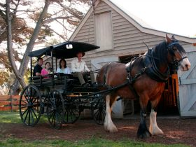horse pulling a cart with people in it