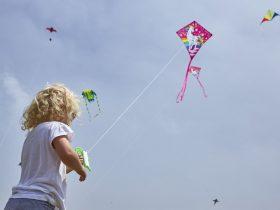 Surf Coast Kite Festival