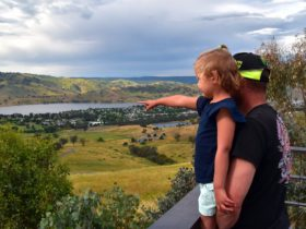 Tallangatta lookout - taking in the views