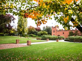 Autumn at All Saints Estate