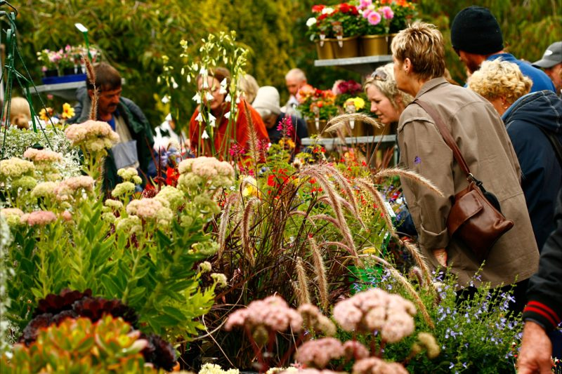 Tesselaar Gardening and Plants Expo