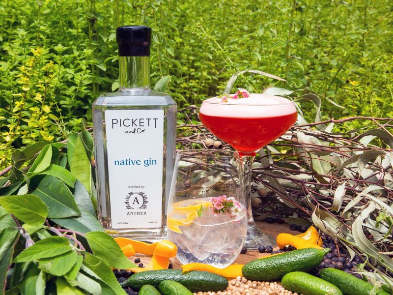 Pickett and Co gin by Anther