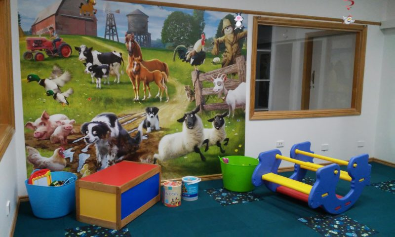 The Crazy Cow Activity Centre - Toddler room