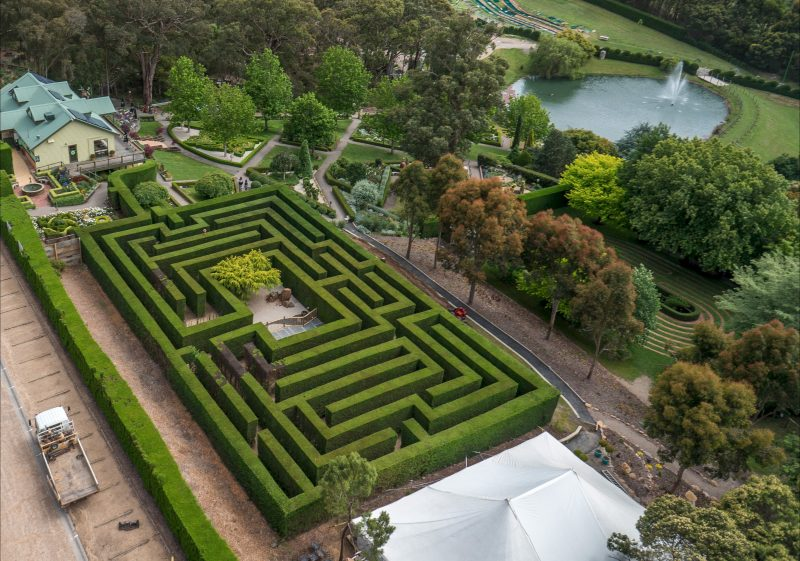 Traditional Hedge Maze