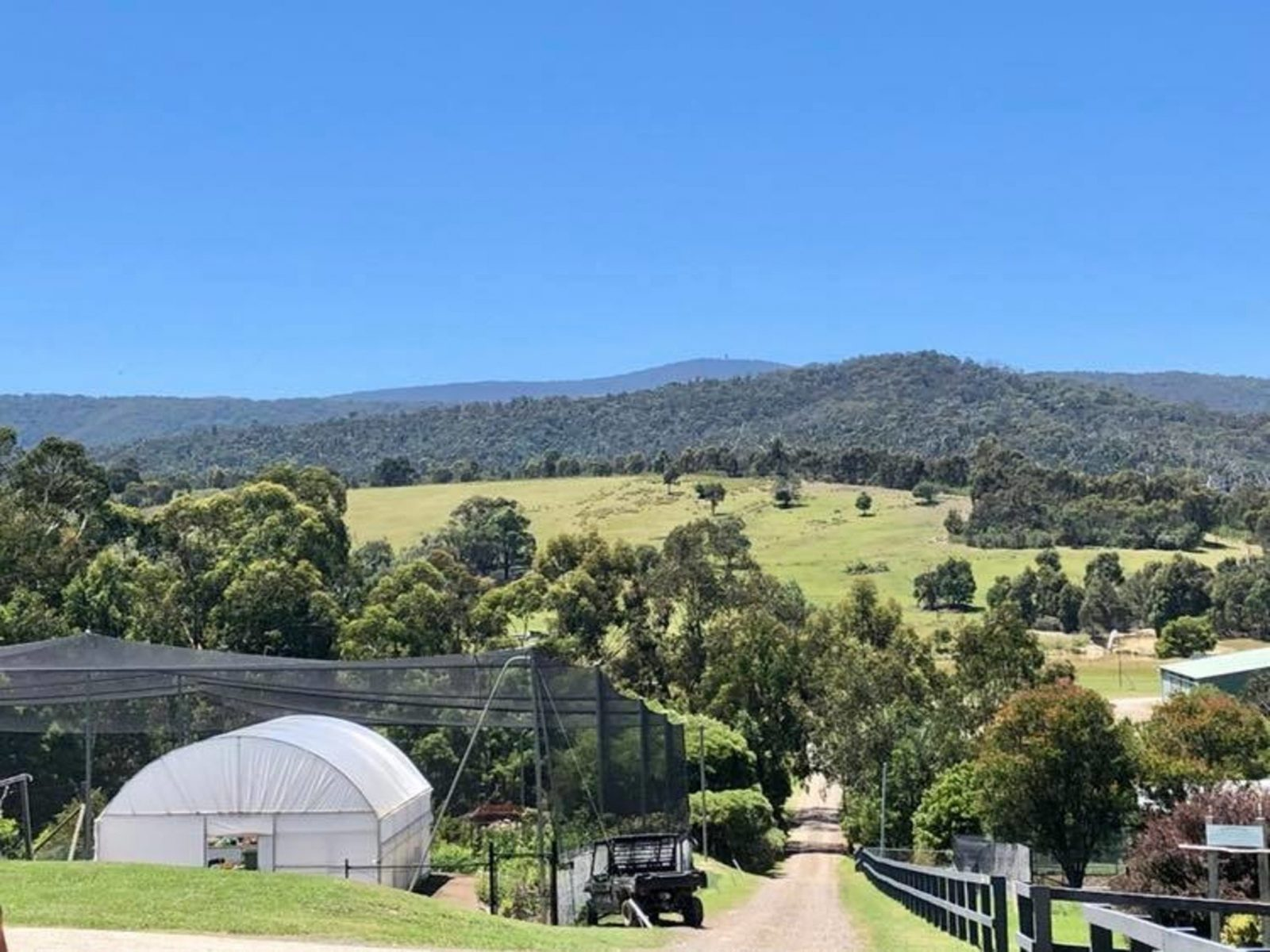 Beautiful view from the Yarra Valley Estate