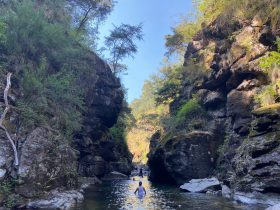 a person standing in a gorge