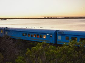 Train by bay at sunset