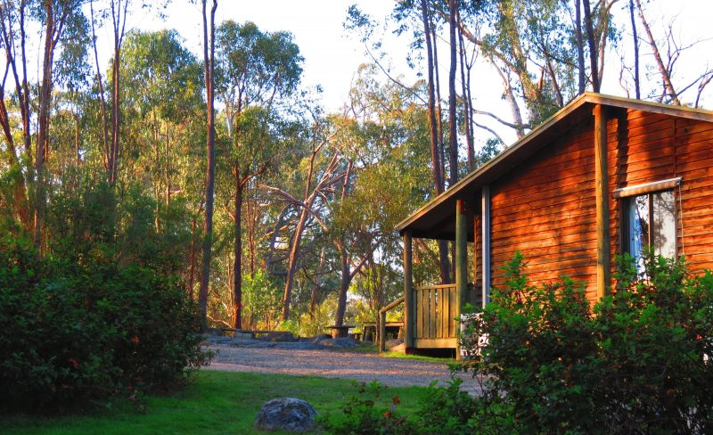 Woolshed Cabins 4