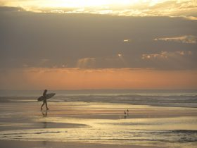 Thirteenth beach sunrise surfer