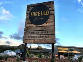 Torello Farm Gate Shop