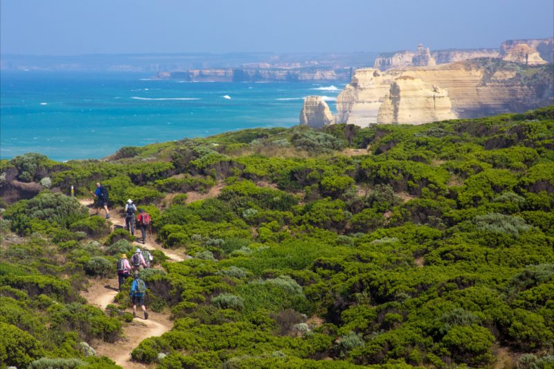 Twelve Apostles Lodge Walk - Fully Guided Experience