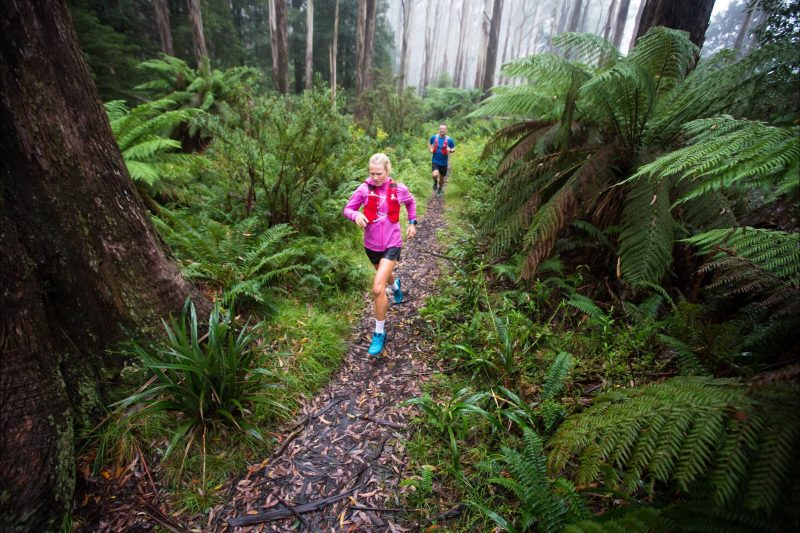 Singletrack running along the Donna Double trail, a highlight of the Warburton Trail fest