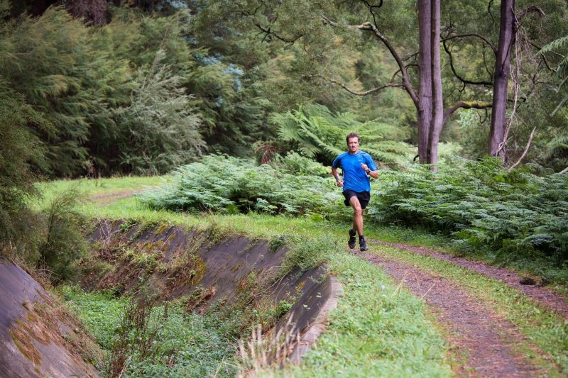 Flat and fast describes the 14km Sawmill Grove run, part of the Warburton Trail Fest
