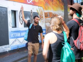 Tour Guide Liam explaining the motifs behind one of Fitzroy's Street Art murals