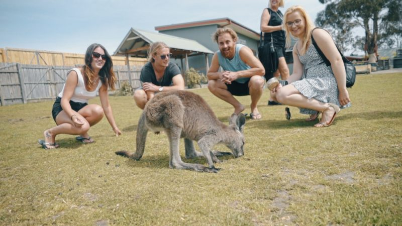 Welcome to Travel: Melbourne - Wildlife Park