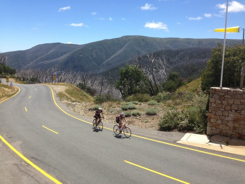 Wide Open Road Cycling Tours