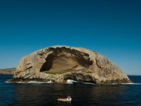 Wilsons Promontory Cruises at Skull Rock